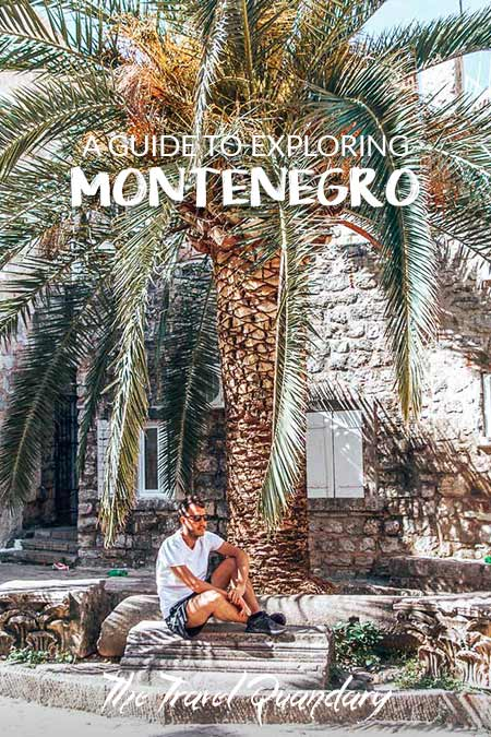 Bevan of The Travel Quandary sits under a large palm tree in Budva, Montenegro