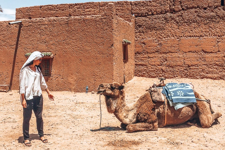 A woman stands facing a kneeling camel in Morocco