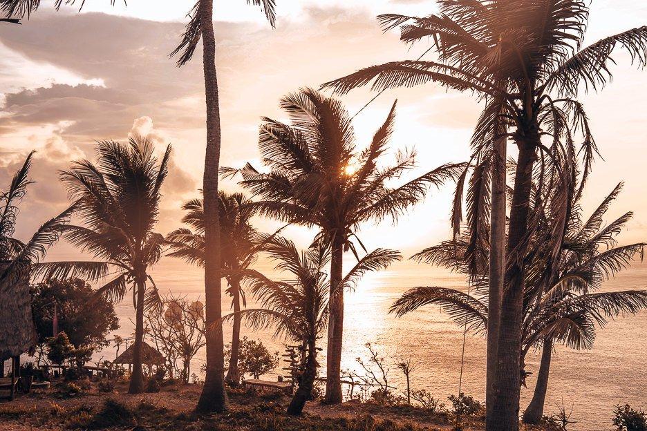 Sunrise through the palm at Thousand Islands, Nusa Penida, Bali Gallery