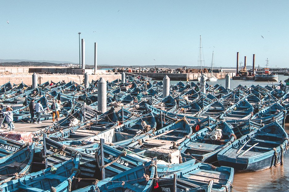 Empty blue fishing boats fill the harbour Essaouira Morocco