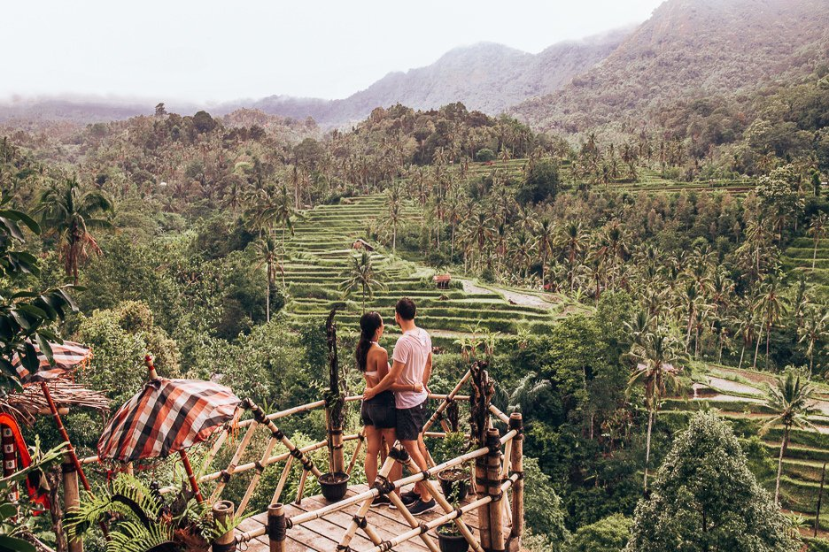 Looking out over the rice fields in Bali Gallery