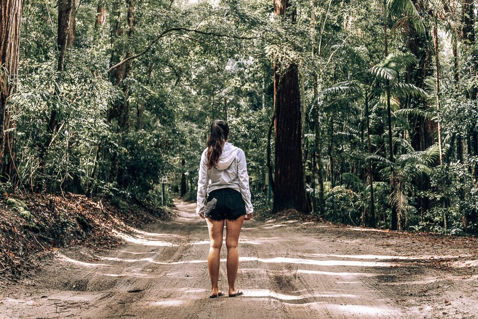 Standing in the middle of K'gari rainforest in Pile Valley, Fraser Island