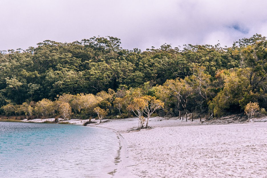 Beautiful shore of Lake McKenzie, Fraser Island